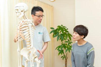 骨格模型を使って説明する写真