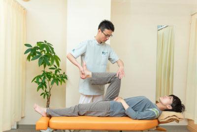 膝関節の検査